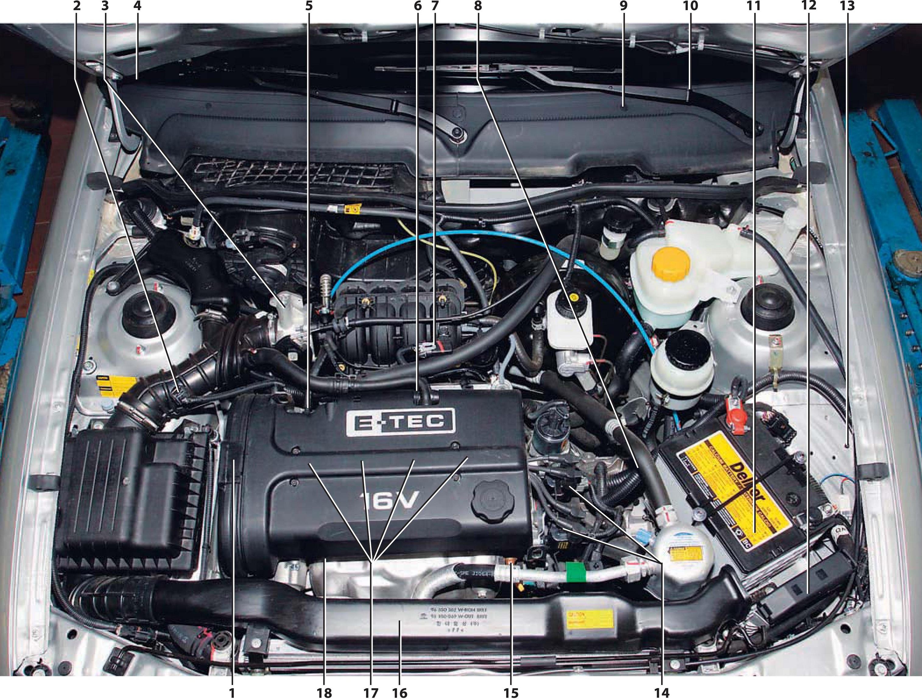 Схема системы охлаждения двигателя ланос 1.5 фото